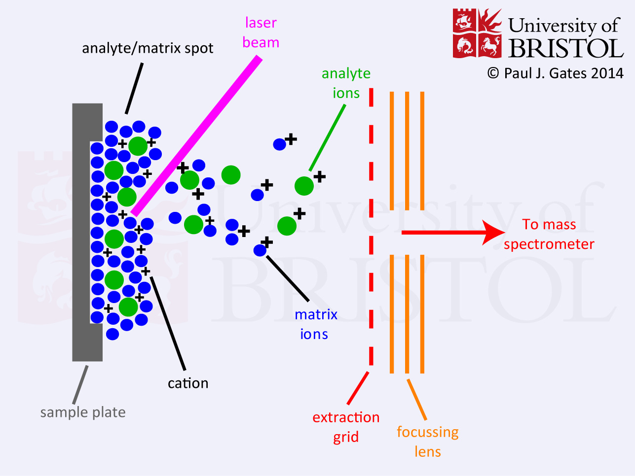 basic principle of mass spectrometry pdf